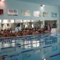 2017-mistrzostwa-gniezna-szkol-podstawowych-i-gimnazjalnych-w-plywaniu